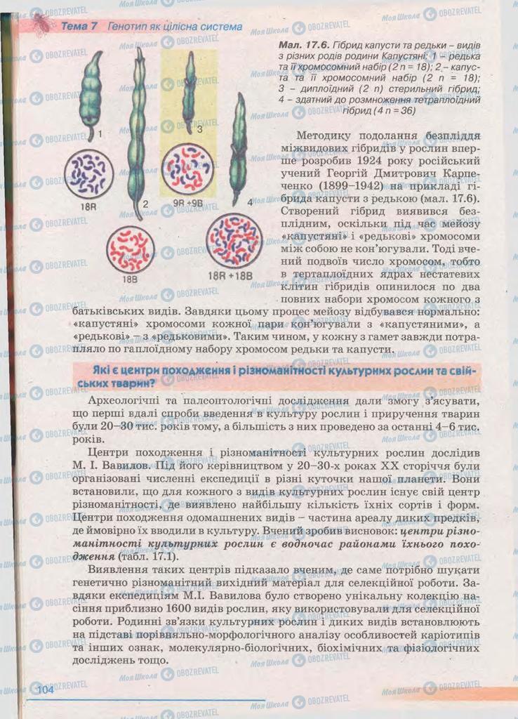 Підручники Біологія 11 клас сторінка 104