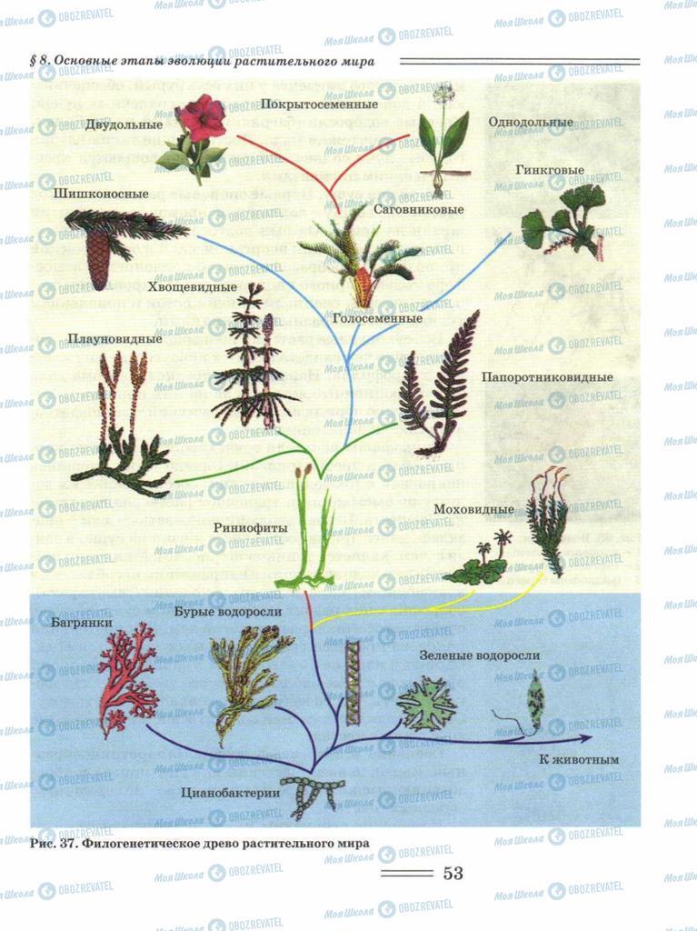 Підручники Біологія 11 клас сторінка 53