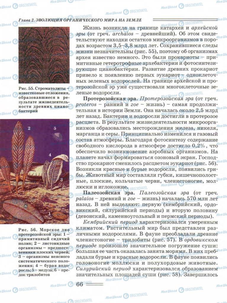 Підручники Біологія 11 клас сторінка 66