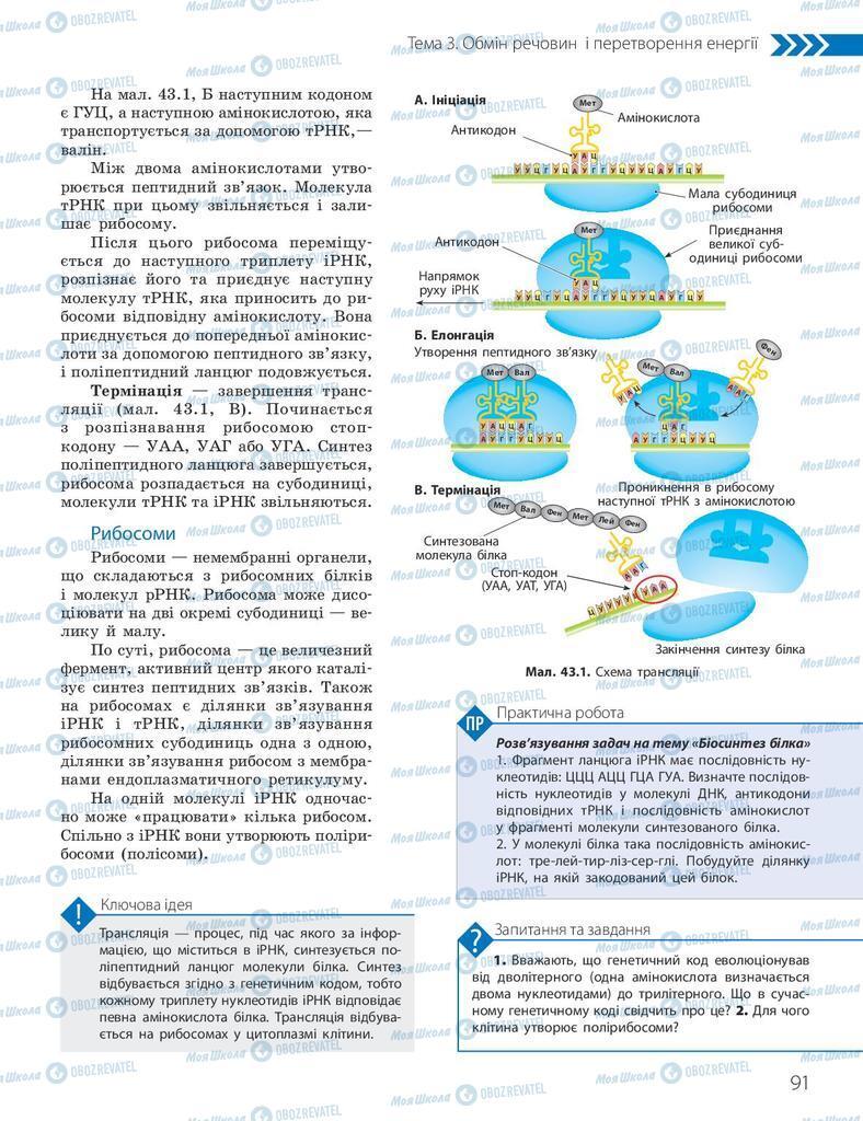 Підручники Біологія 10 клас сторінка 91