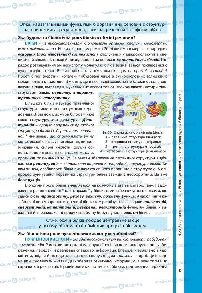 Учебники Биология 10 класс страница 85