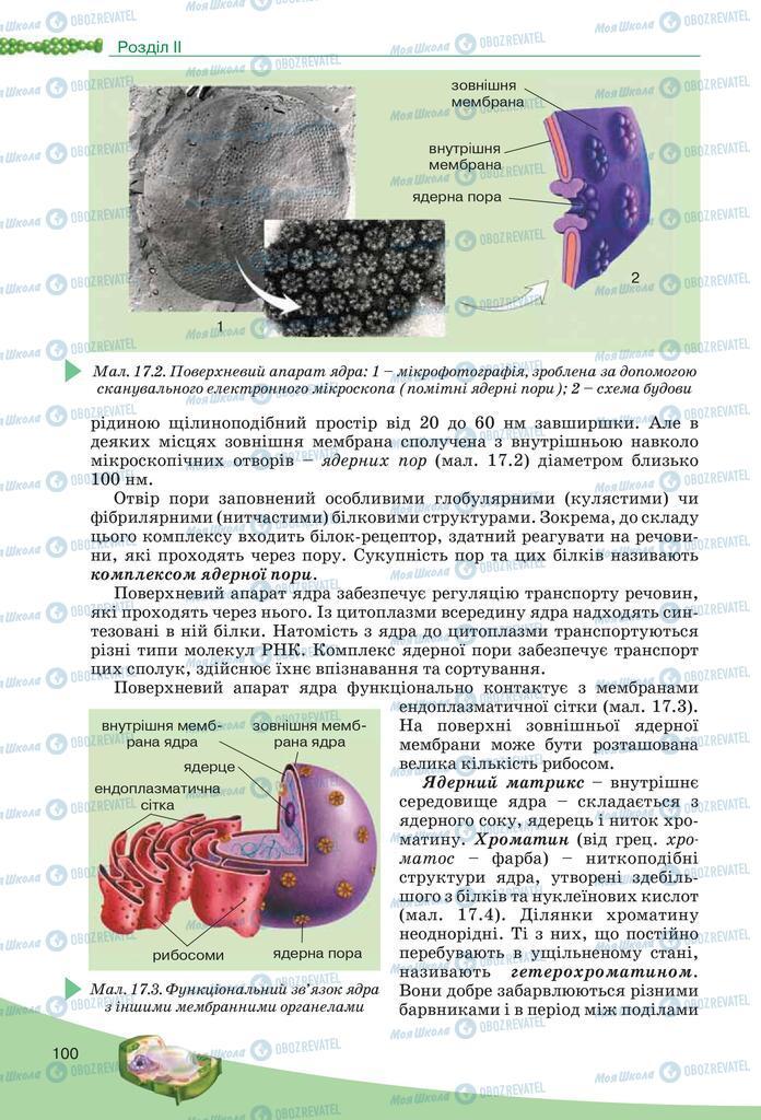 Підручники Біологія 10 клас сторінка  100