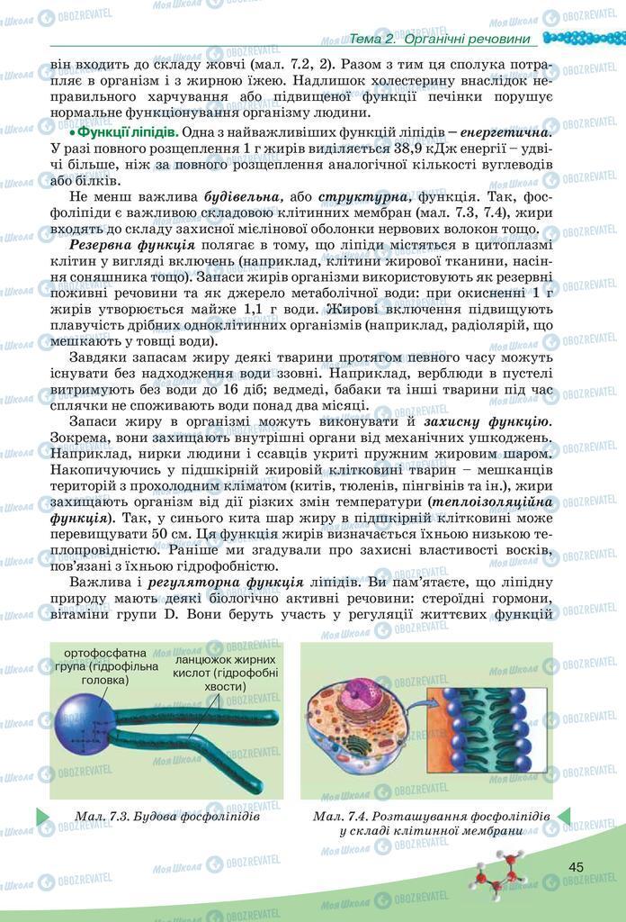 Підручники Біологія 10 клас сторінка 45