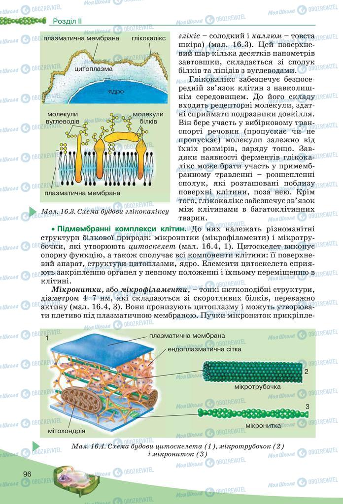Підручники Біологія 10 клас сторінка 96