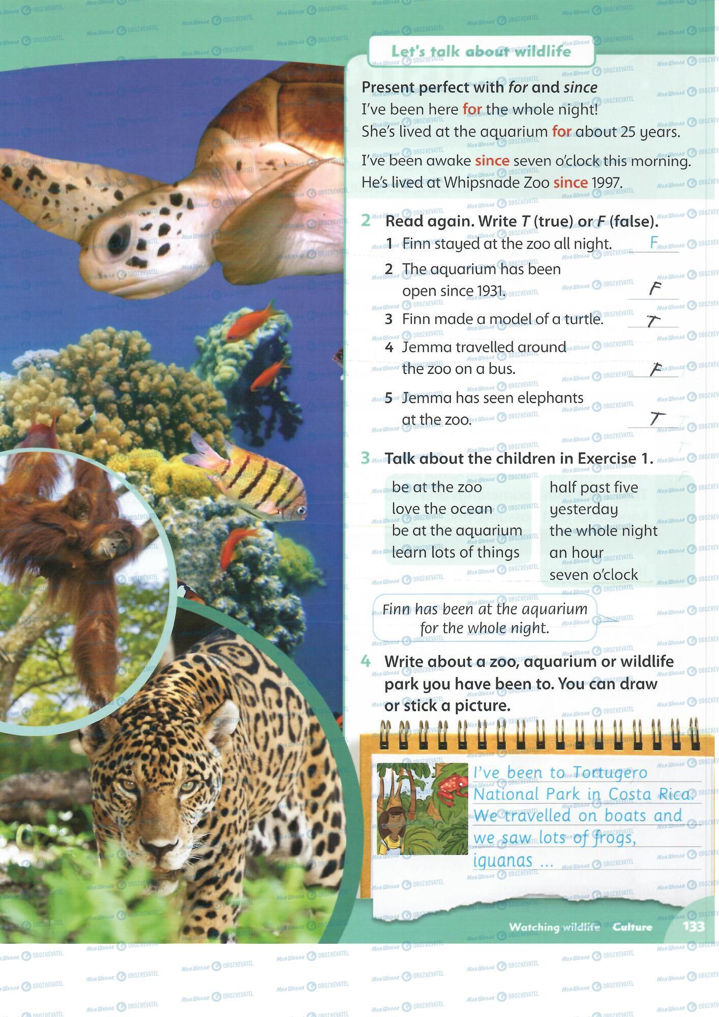 ГДЗ Английский язык 4 класс страница 133