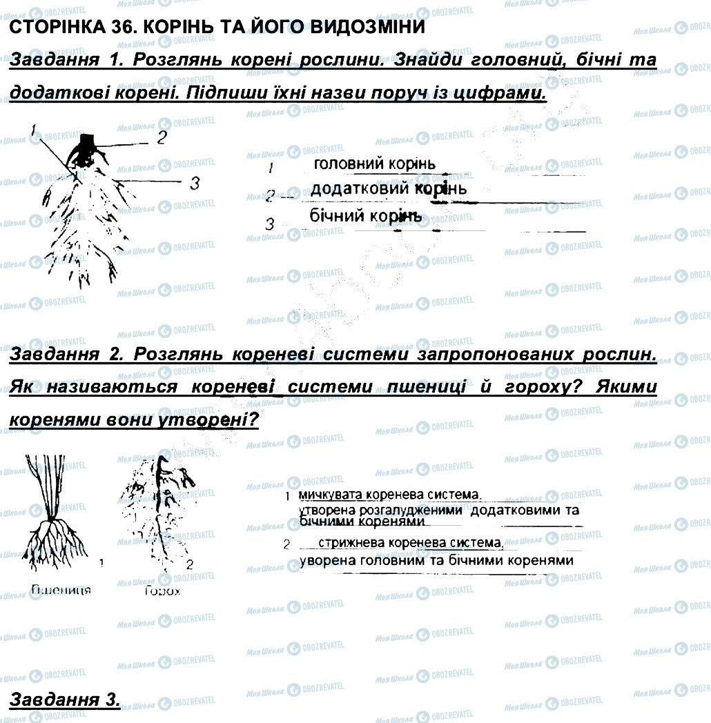 ГДЗ Біологія 6 клас сторінка СТ36