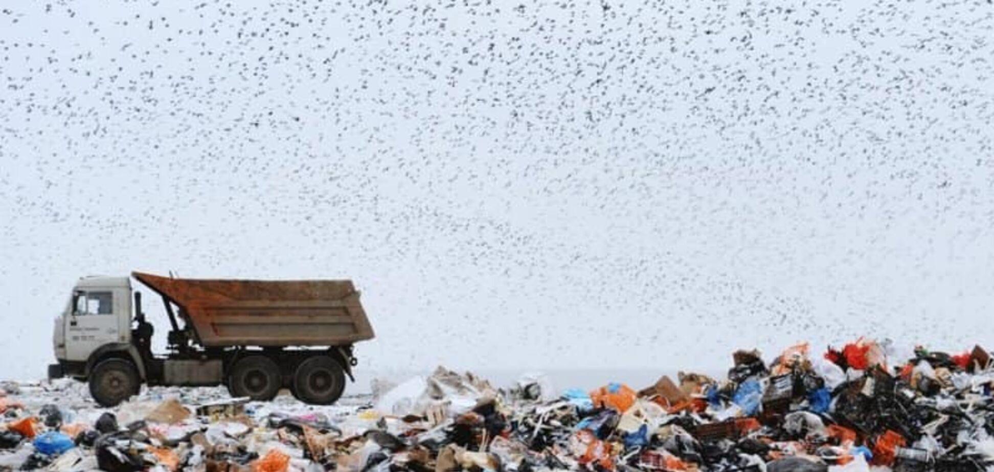 Стихийные свалки в Киеве можно убрать за год: 'Экологическая альтернатива' озвучила главные решения