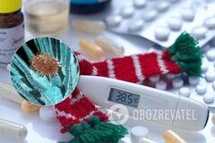 Медик заявил о появлении новых вирусов гриппа в Украине