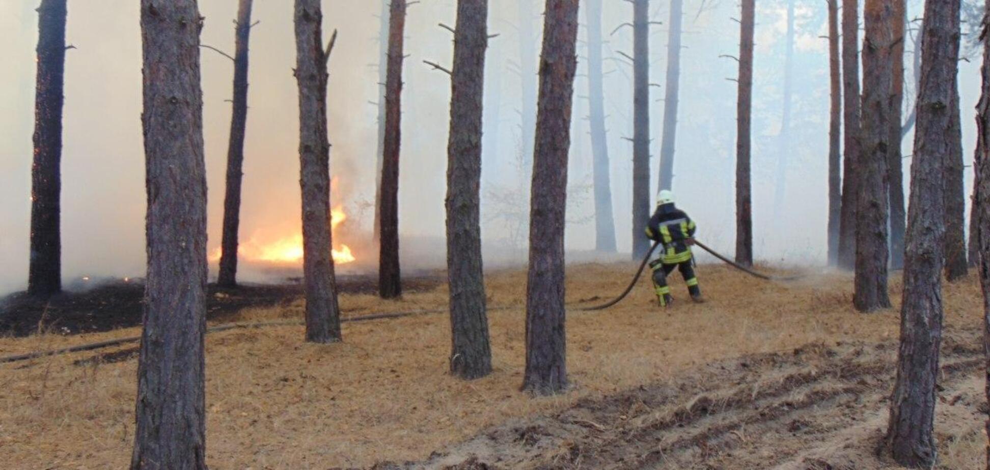 В пожарах в Луганской области погибли три человека