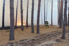 У пожежах в Луганській області загинуло троє людей