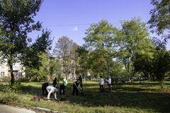 В Днепре слушатели 'Университета третьего возраста' и другие горожане высадили 170 деревьев