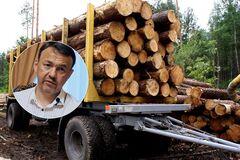 На Закарпатье во время речи Петрова вывозили лес