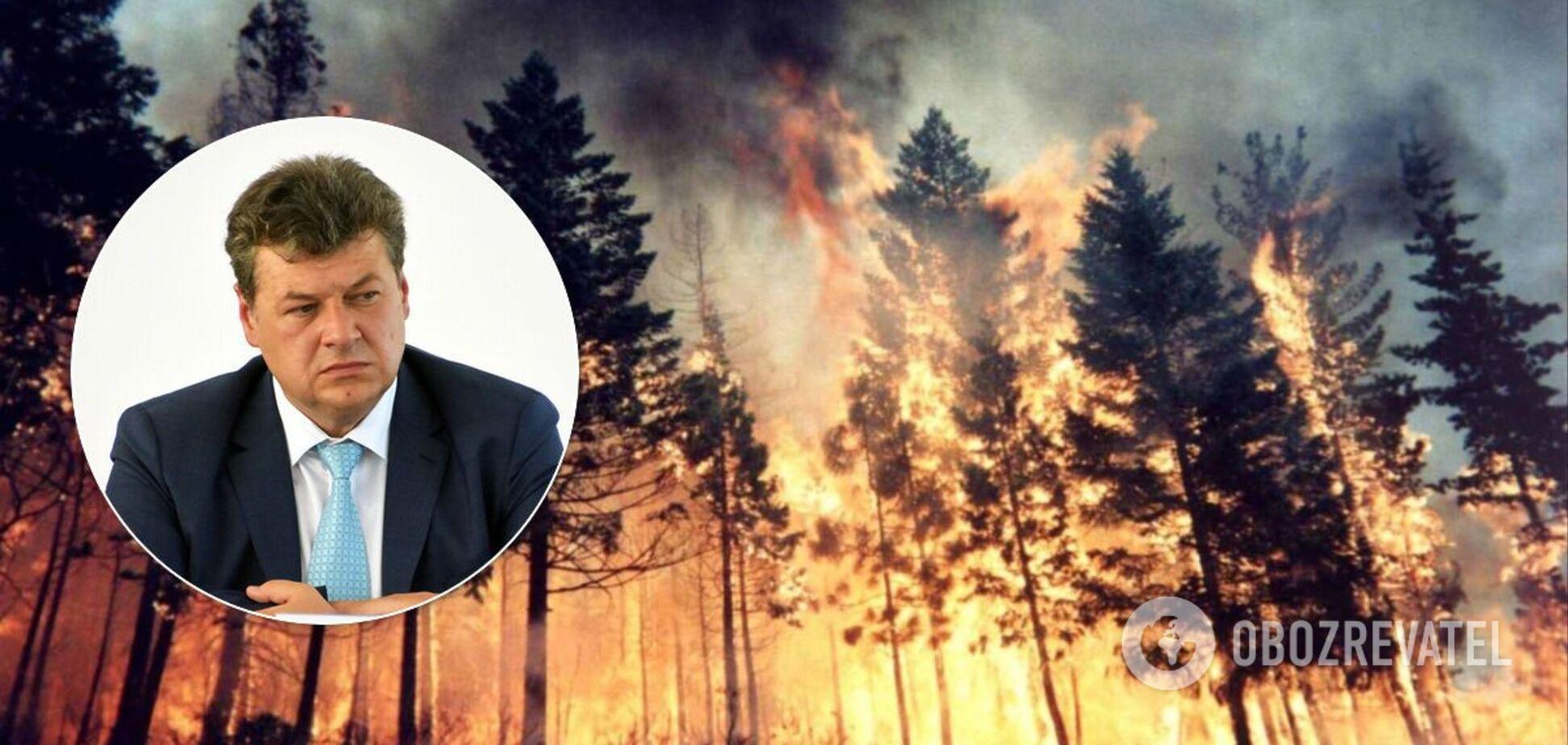 Пострадавшим от пожаров на Житомирщине выплатят по 300 тысяч грн – председатель ОГА