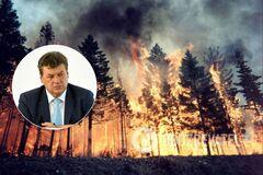 Постраждалим від пожеж на Житомирщині виплатять по 300 тисяч грн – голова ОДА