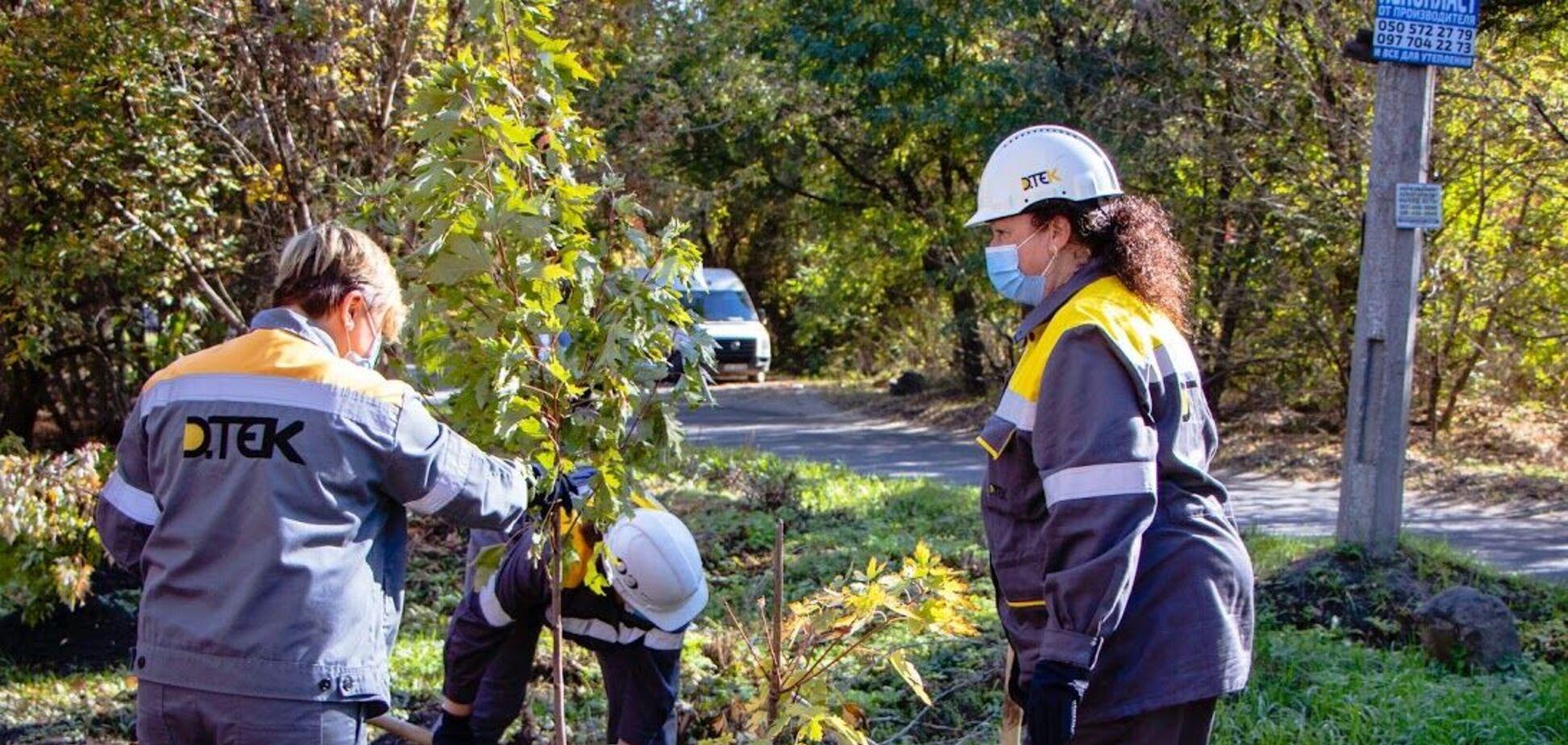 Озеленение 2020: в Днепре промышленные гиганты высадили деревья