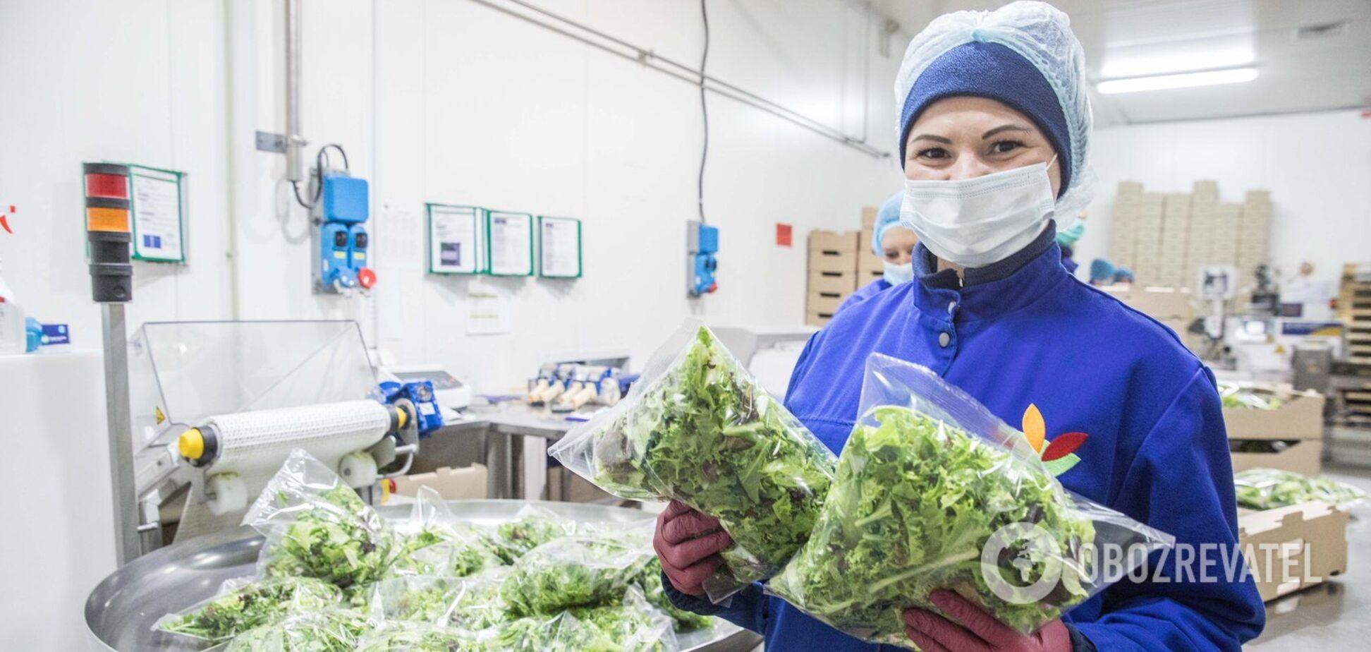 Фино Верде: как украинская компания поставляет салаты в рестораны McDonald's