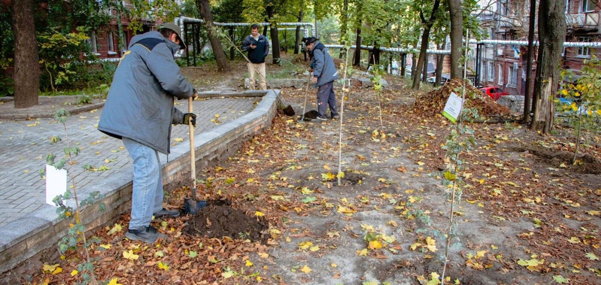 Днепр цветущий: более 5000 молодых деревьев высадят на придомовых территориях жилых домов