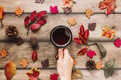 Что отмечают 24 октября: приметы и праздники