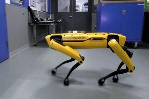 Робот исследовал Чернобыльскую зону