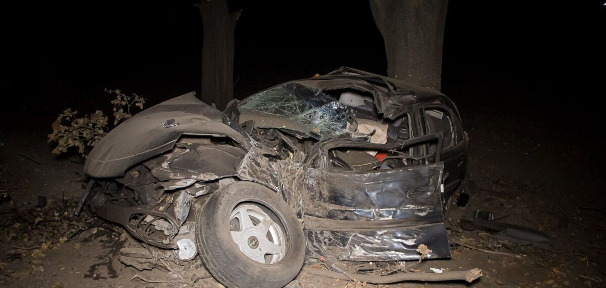На Днепропетровщине авто врезалось в дерево, водитель погиб. Фото