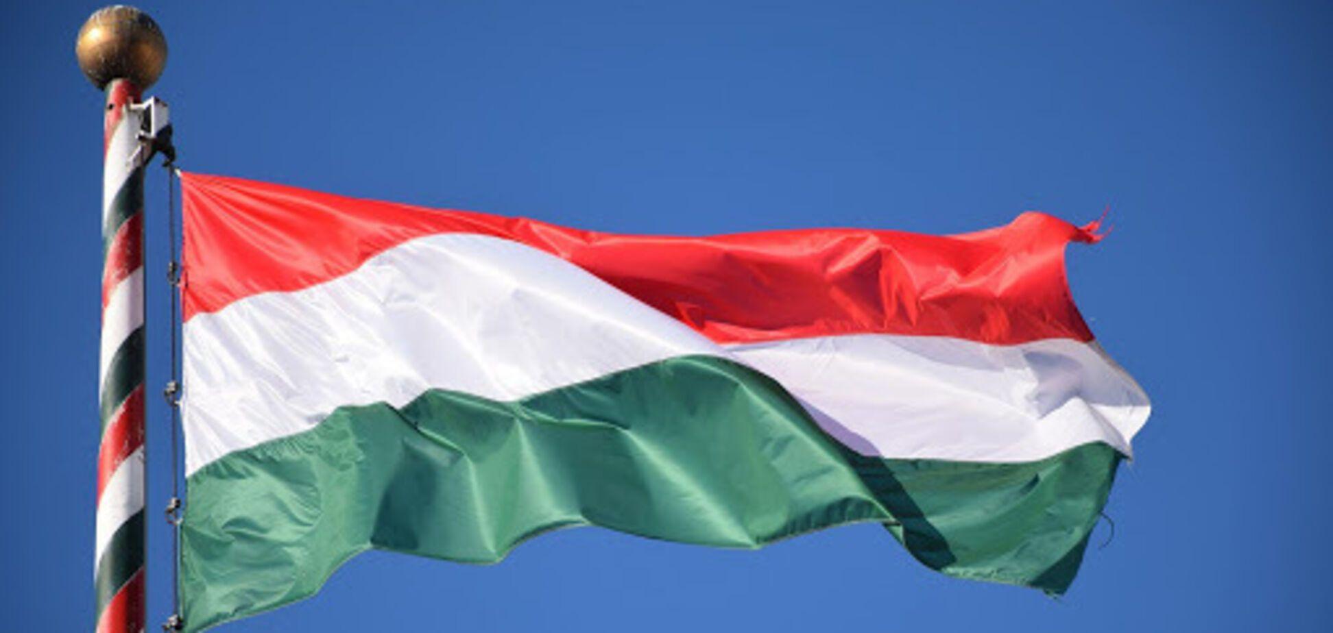 Венгрия вмешивалась в выборы в Украине, заявил МИД