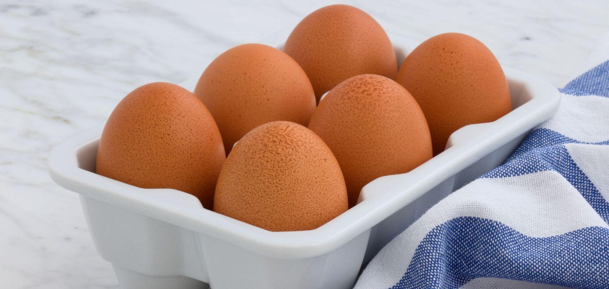 Забарвлення шкаралупи яєць залежить від породи курей