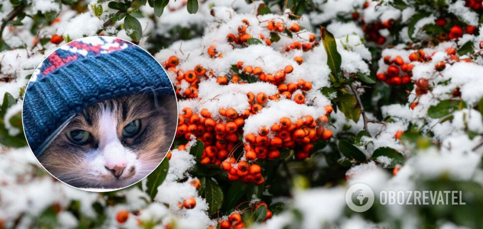 Взимку Україну накриють морози і заллє дощем: синоптики дали прогноз