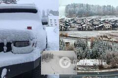 Украинские Карпаты засыпало снегом