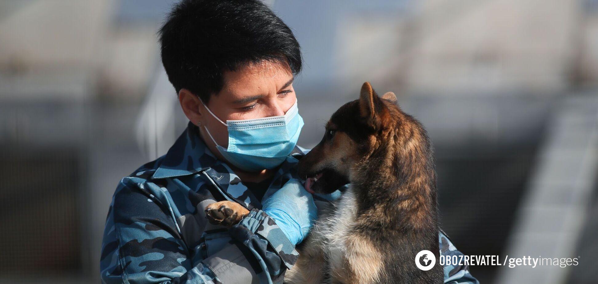 Финский эксперт поделилась опытом тренировки собак