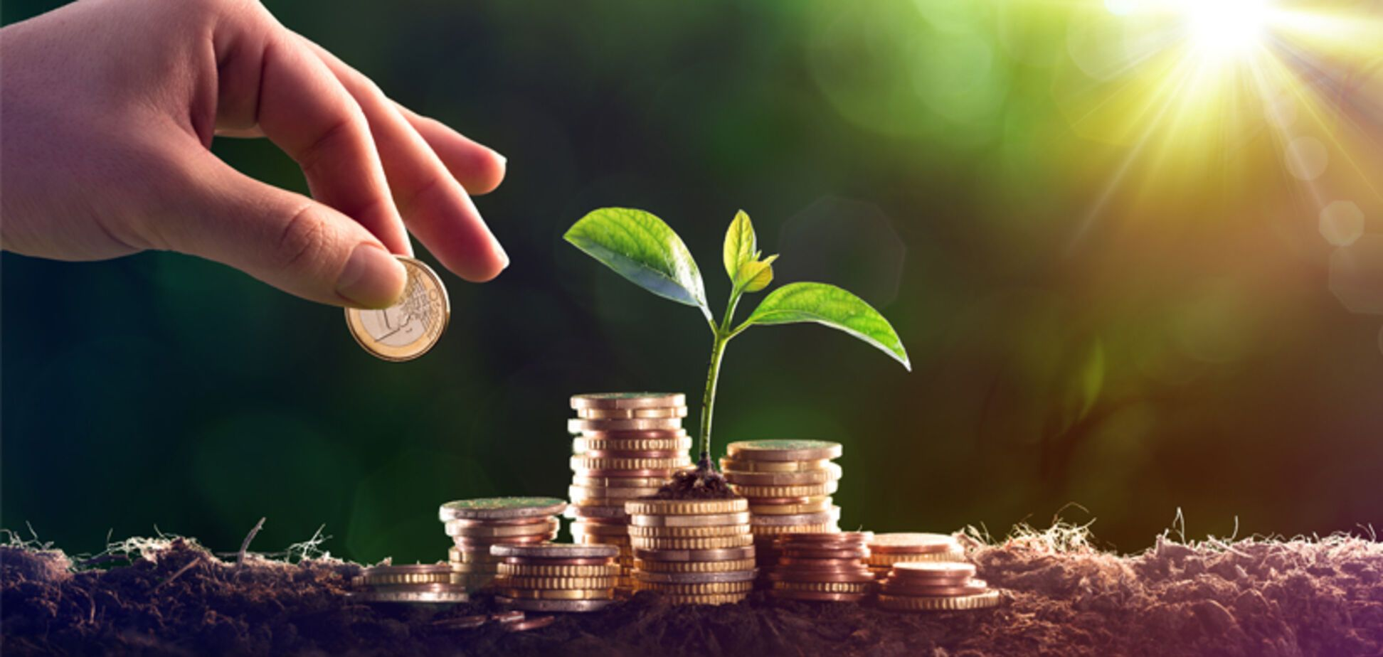 Рост ставок эконалога не обеспечил эффективного использования средств