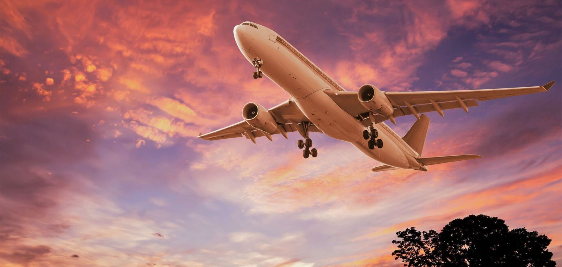Стало известно, когда можно будет свободно летать в Европу: названо три сценария