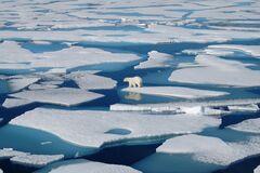 В арктических морях зафиксировали рекордную концентрацию метана