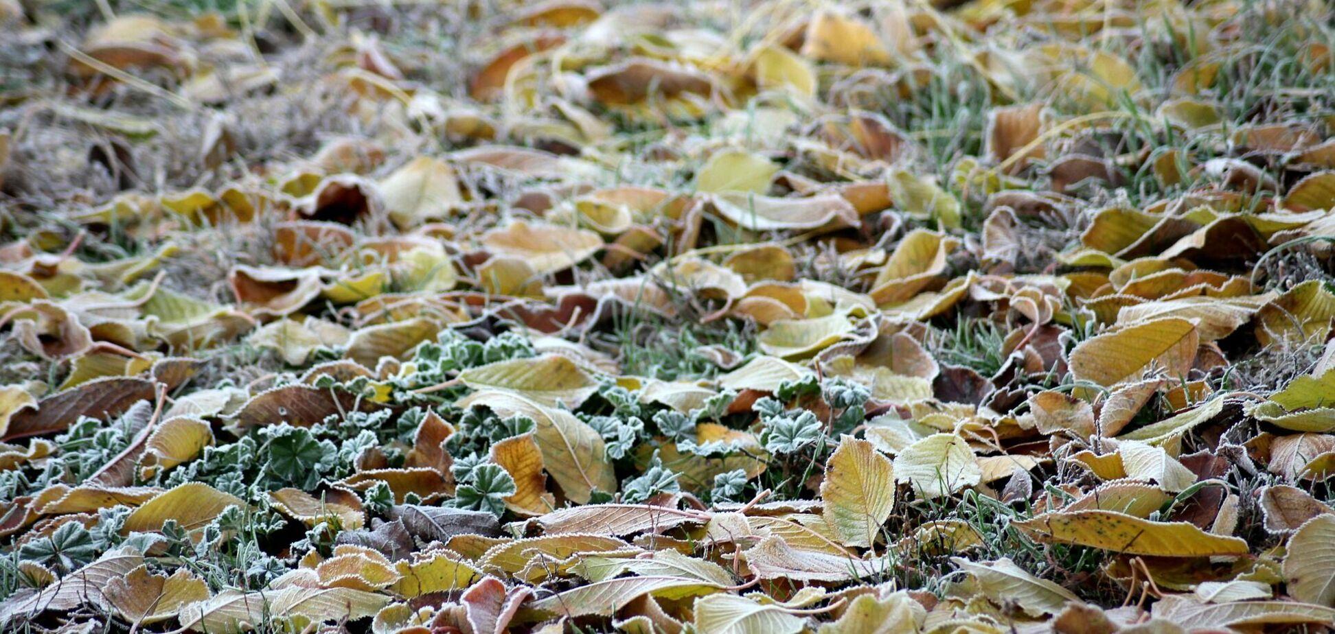 В среду в Украине ожидаются морозы даже днем