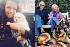 Байден с собаками и Зеленский с попугаем: любимые домашние животные звезд