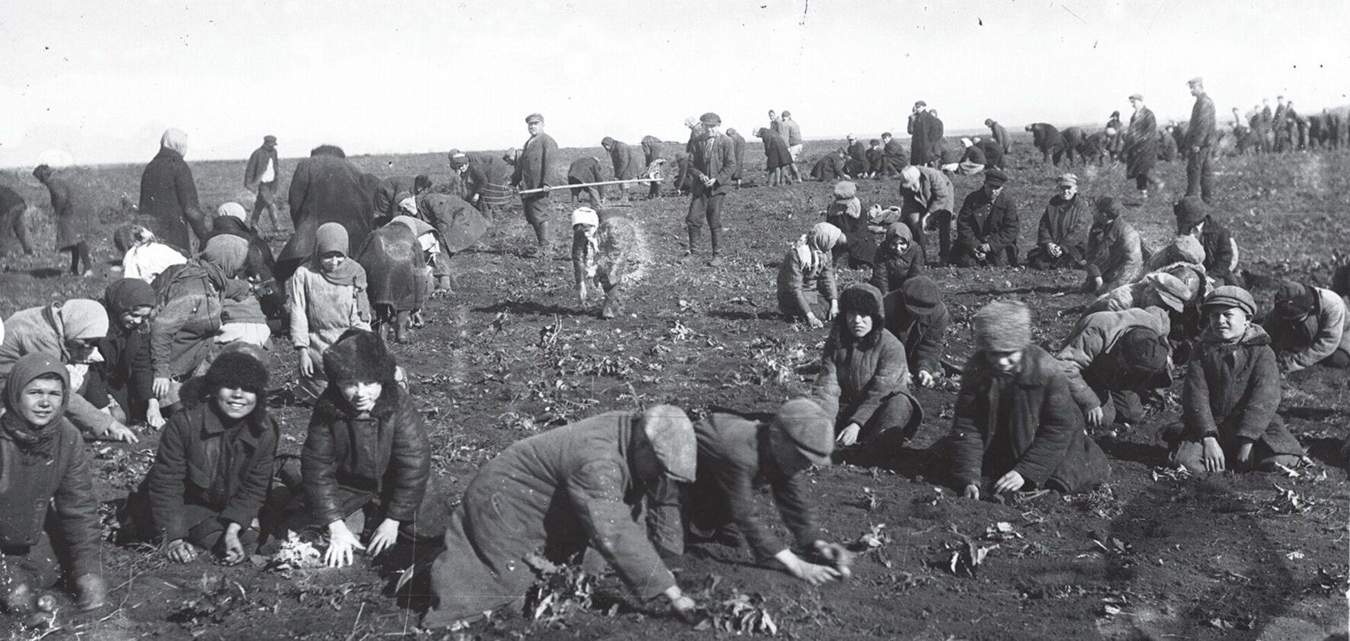 Дитяча праця повсюдно застосовувалася в СРСР