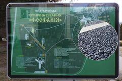 В Киеве начался автомарш в 'Феофанию'