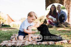 У Кейт Миддлтон и принца Уильяма умерла собака