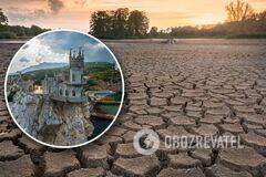 'При Украине такого не было': в Крыму разворачивается экологическая катастрофа из-за нехватки питьевой воды