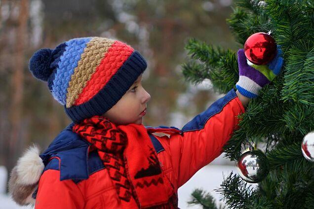 Главную новогоднюю елку в Виннице устанавливать не будут