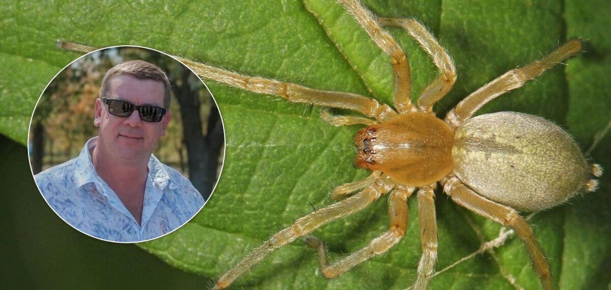 Мужчине ампутировали ноги после укуса паука