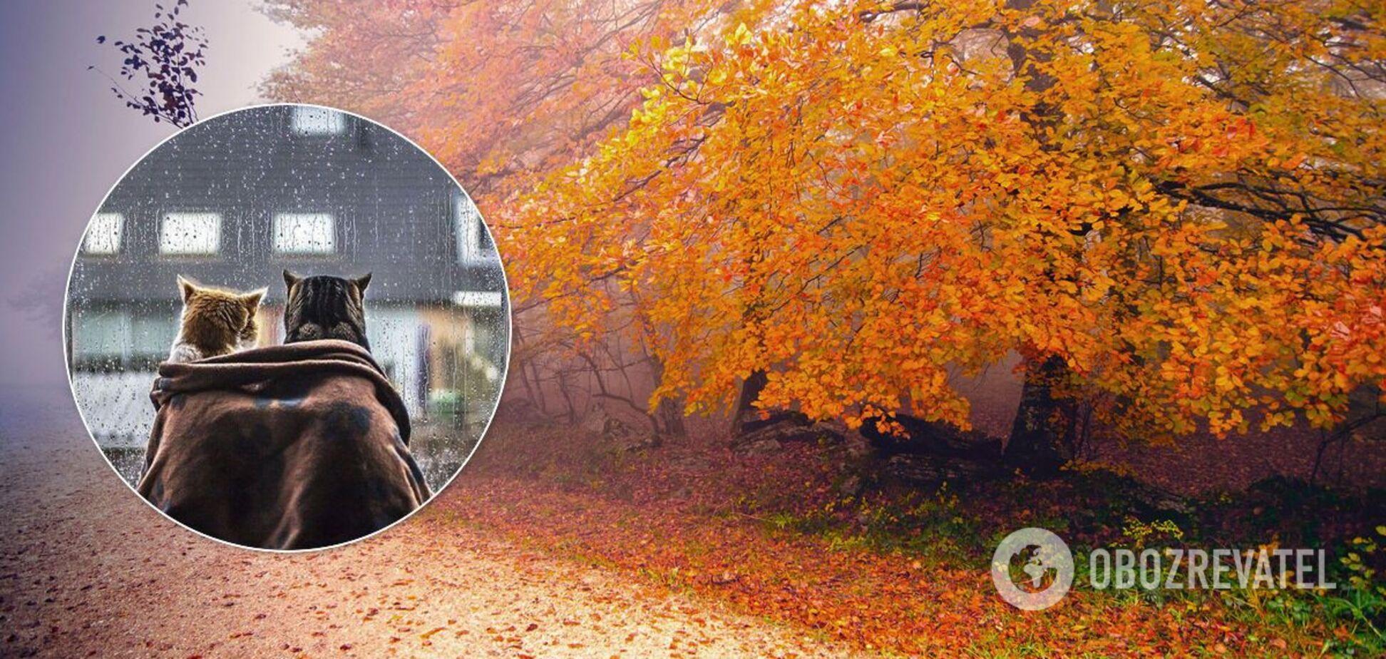 Погода в Україні 4 листопада буде прохолодною