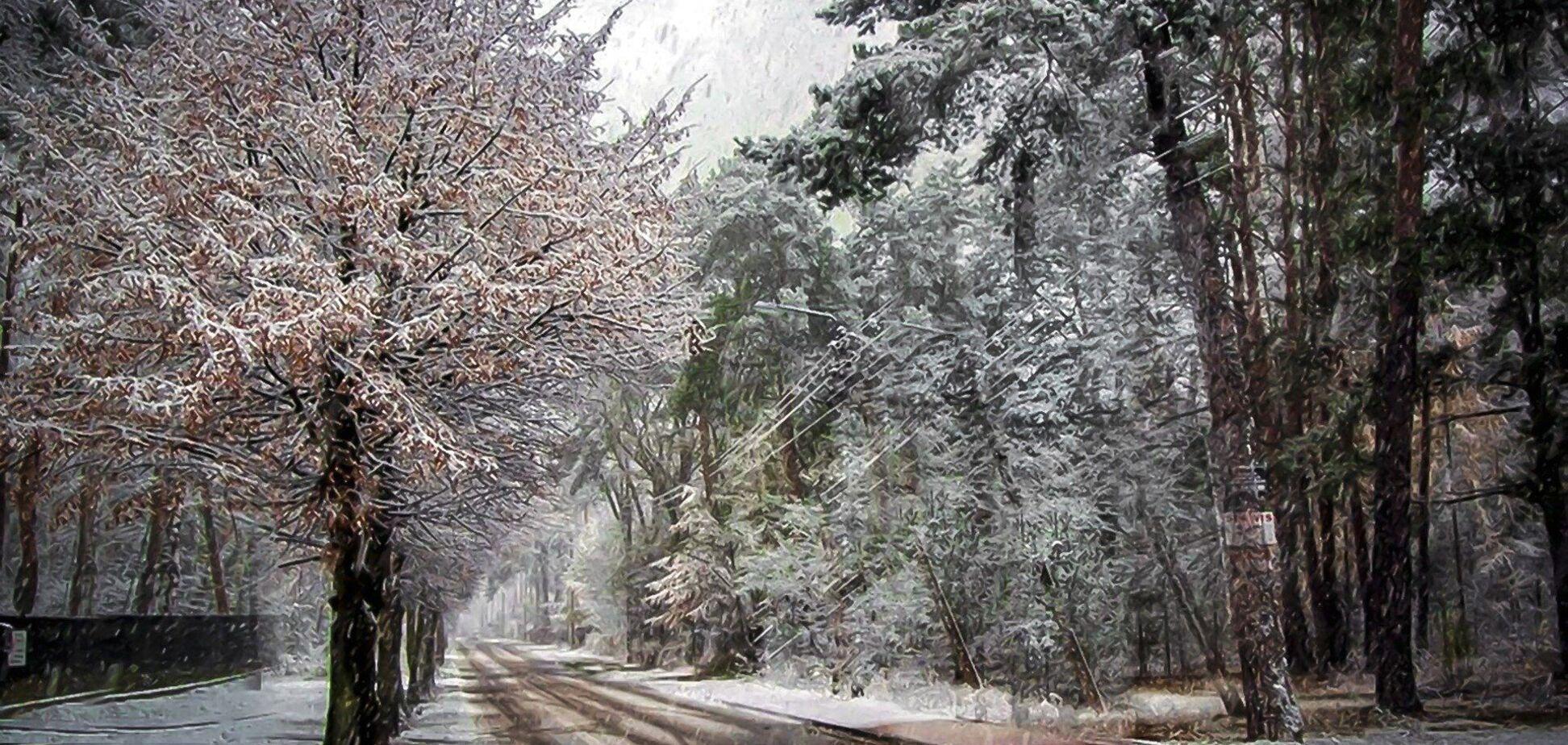 В Украине предупредили о мокром снеге и гололеде