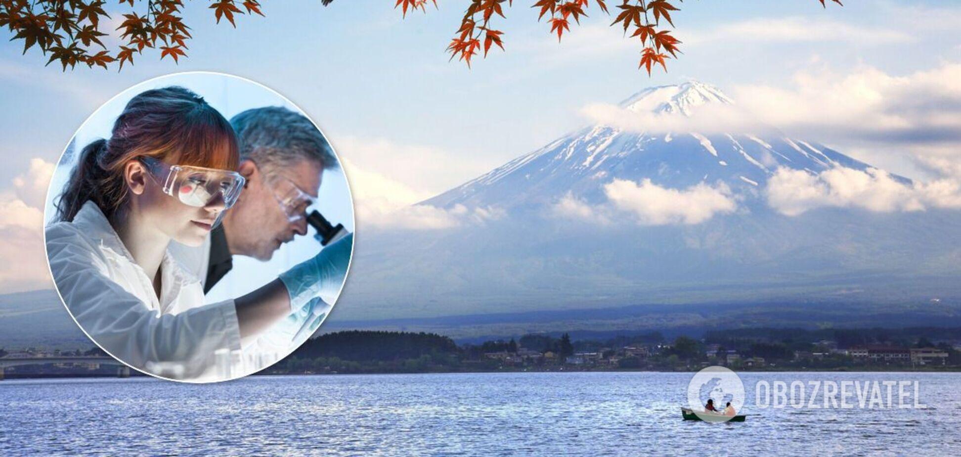 В Японії виявили справжню 'Годзіллу'. Фото