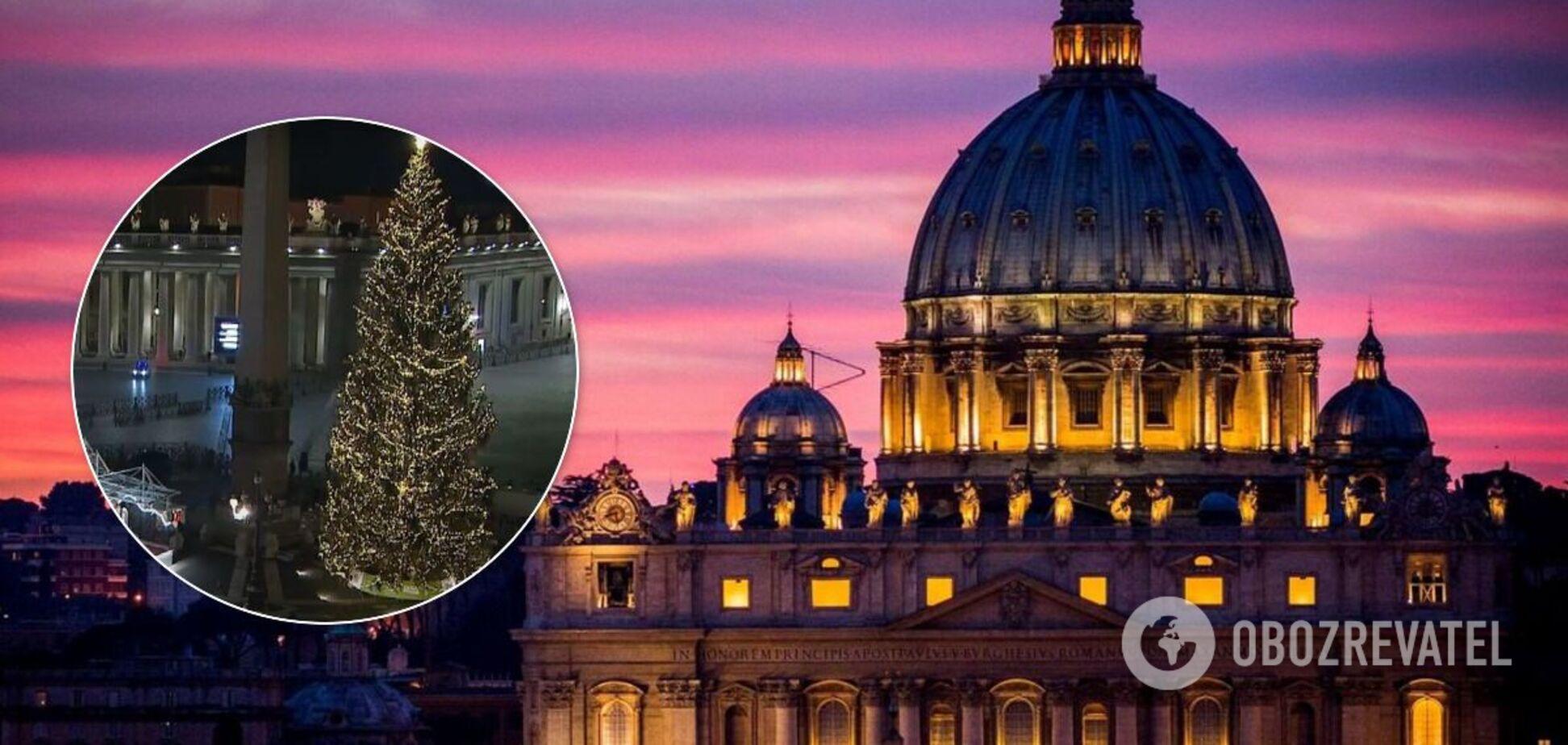 В Ватикане зажгли главную рождественскую елку. Фото и видео