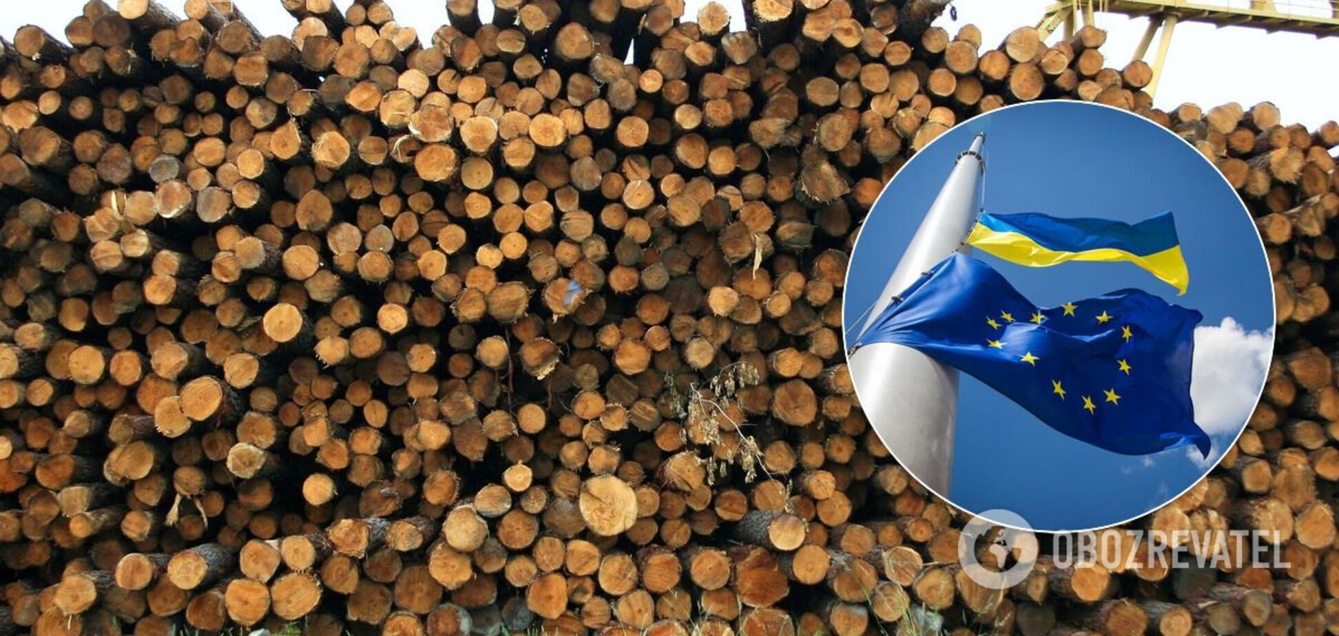 В Україні хочуть відновити експорт лісу