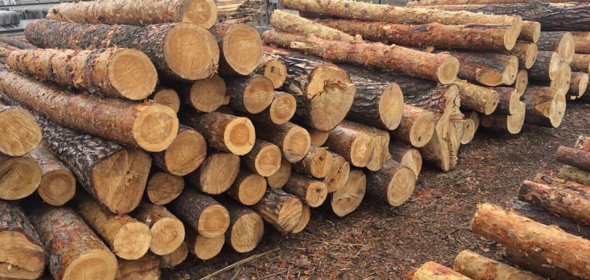 Експорт лісу-кругляка: як змусити Європу враховувати інтереси України
