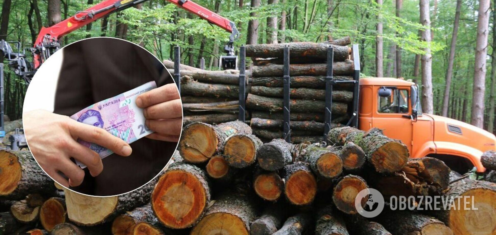 В Україні лісгоспи через корупцію втрачають мільйони. ТОП-10 схем