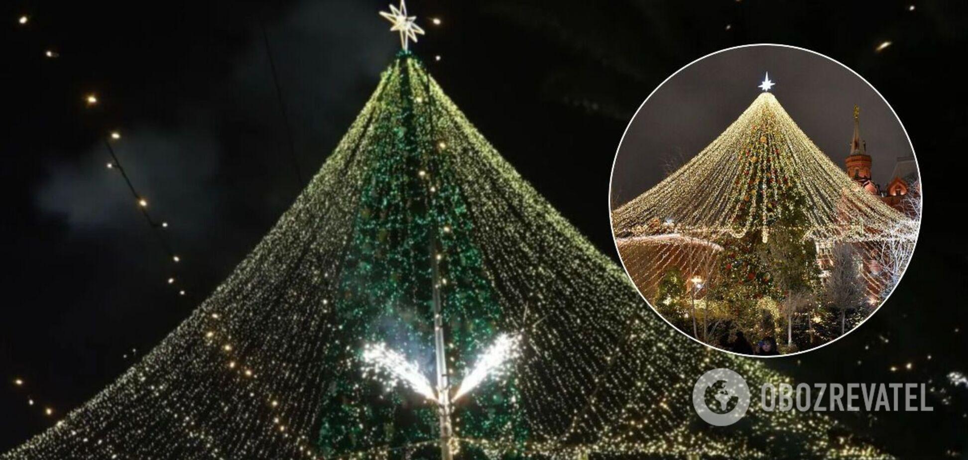 Украинцы в сети устроили 'зраду' из-за главной елки страны