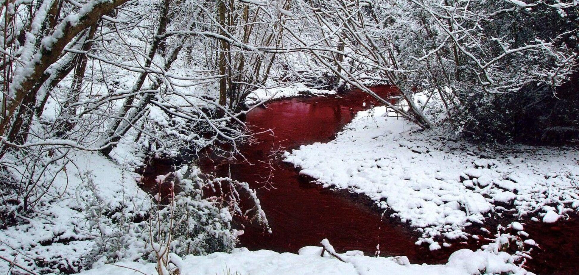 У Карелії знайшли річку з крові і риб'ячого жиру