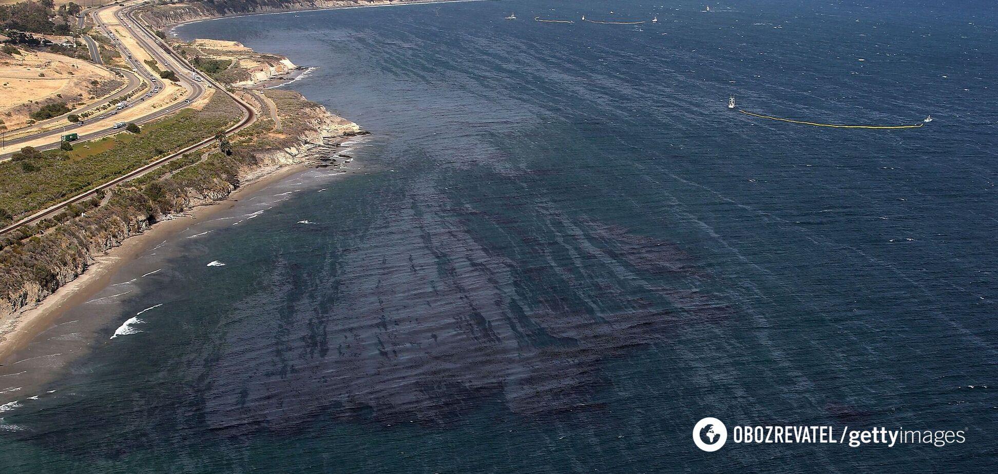 Знайдено істот, що живуть на кілометр нижче за океанське дно. Фото